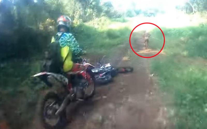 機車騎士在印尼叢林遇見「謎樣生物」,向前追去後驚見詭異情況…片段畫面流出引爆網友熱議